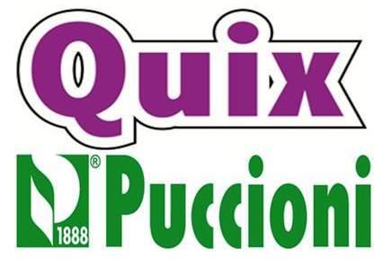 Quix Puccioni Logo